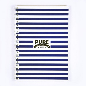 Скетчбук Pure Books синий