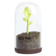 Контейнер для сыпучих Qualy Sprout Jar